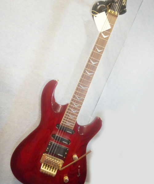 chitarra.samick.artist